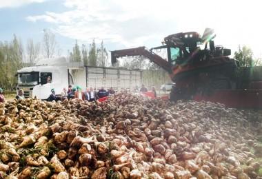 Turhal Şeker Çiftçilerine Kayseri Şeker'den Maus Hizmeti