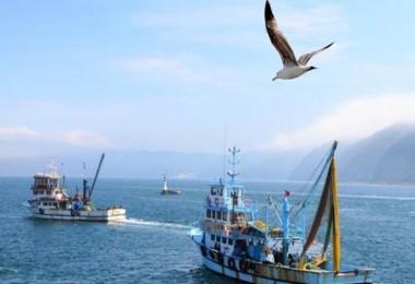 Kıyı Balıkçılarına 500 - 1.000 TL Arasında Destekleme Yapılacak