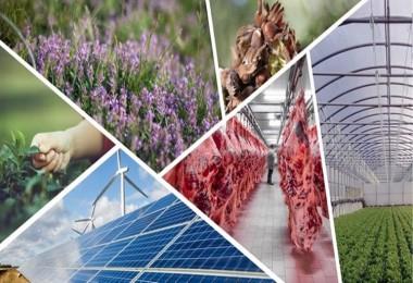 Kırsal Kalkınma Projelerine Yüzde 50 Hibe Desteği
