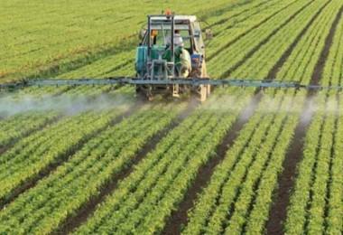 Sudan'da Türk Şirketlere Tarımsal Yatırımın Önü Açılıyor