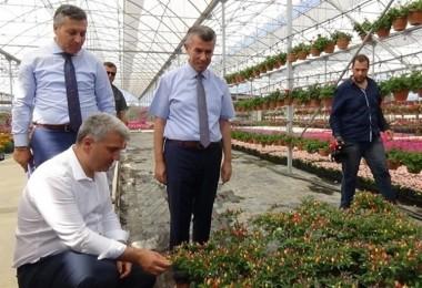 Kazdağları'nı Çiçek Açtıracak Projeyi İncelediler