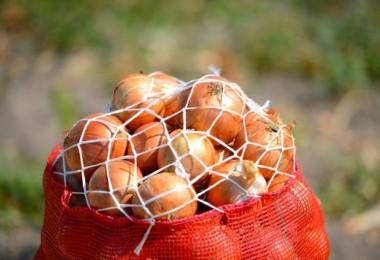 Son Dakika... Sıfır Gümrükle Kuru Soğan İthal Edilecek