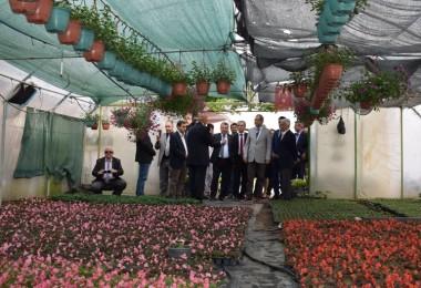Silivri'de Süs Bitkileri Etkinliği Düzenlendi