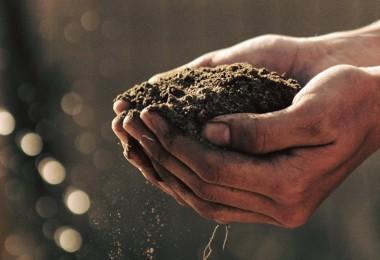Toprağı Koru, İklimi Koru