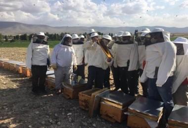 Konya ve Karaman'daki Arıcılara FAO'dan Destek!