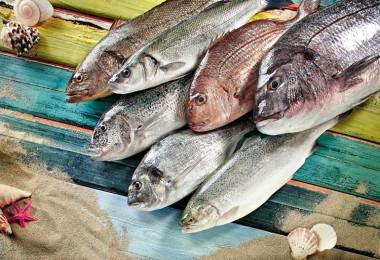 Amerika'ya Balık İhracatımız 9 Yılda 115 Kat Arttı