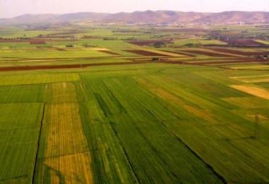 Hazineye Ait Tarım Arazilerinin Kiralanması ve Satışı Yapılabilecek