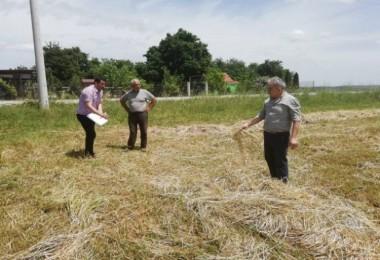 10 bin çiftçiye, ücretsiz danışmanlık ve veterinerlik hizmeti