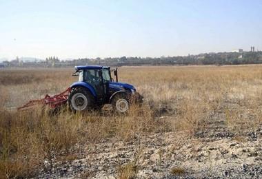 AOÇ'de tohum üretilecek
