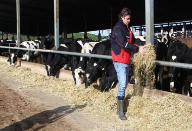 Tarım Politikalarını Eleştiren Çiftçiye Ceza İddiası! Konu Meclis Gündemine Taşındı