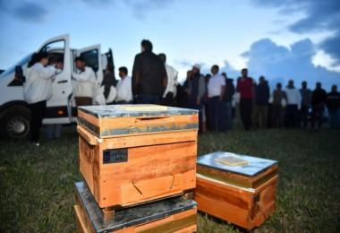 Başkentli Çiftçiler Arı Kovanlarına Kavuşuyor