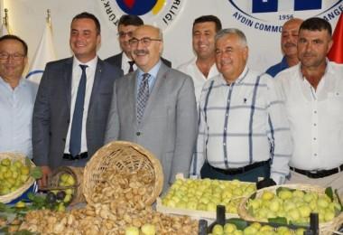 Aydın'da Sezonun İlk Kuru İnciri Kilogramı 80 Liradan Satıldı