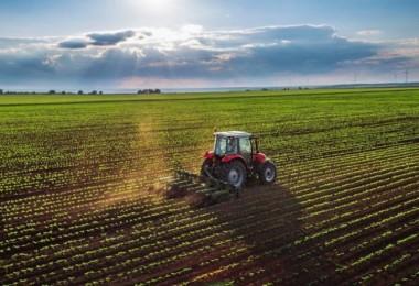 Havadaki Ani Değişim ve Yağışlar Çiftçinin Kabusu Oldu