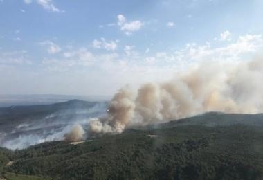 Gelibolu Orman Yangını Kontrol Altına Alındı