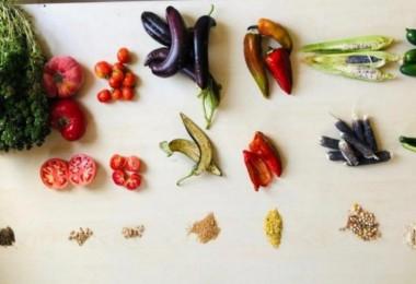 İyi Tarım Uygulamalarını farklı projelerimizle destekliyoruz