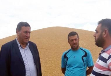Buğday Üreticileri TMO'yu Milletvekili Gürer'e Şikayet Ettiler