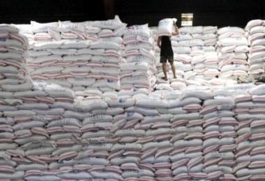 TMO, 30 Bin Ton Pirinç İthal Edecek