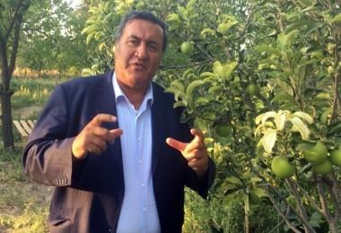 """Gürer: """"Akdeniz Meyve Canavarı"""" bütün ülkeyi sarmadan önlem alın!"""