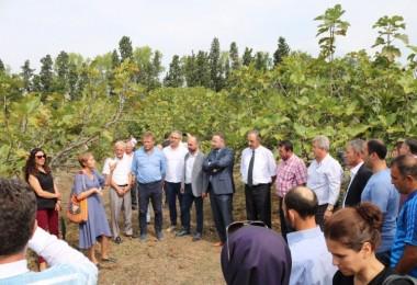 Hasat Sonrası Kayıpları Azaltmak İçin Yenilikçi Proje Tanıtıldı