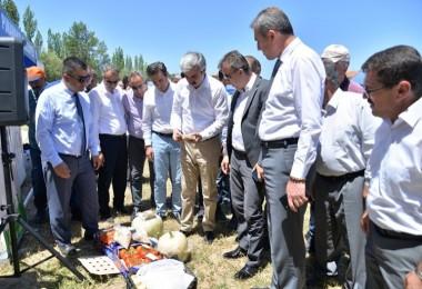 Kayseri'de İyi Tarım Uygulamaları Sertifikası Olan Küpeli Alabalık Üretiliyor