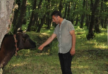 Sarıbal: Süt Üreticisi Sahipsiz Bırakıldı