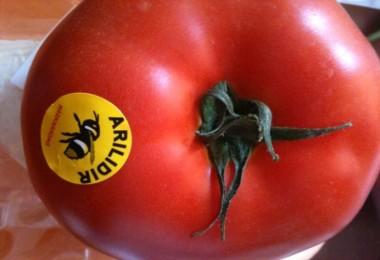 Sebze ve meyvelerin üzerinde bulunan 'arılıdır' ifadesi ne anlama gelir?