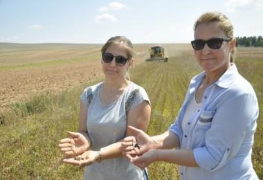 Kadın Çiftçilerin 'Çörek Otu' Hasat Sevinci