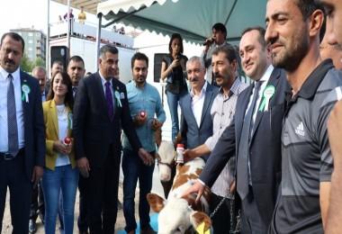 Elazığ 2. Tarım, Tarım Makineleri, Gıda, Hayvancılık Ve Teknoloji Fuarı Açıldı