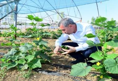 Tarım Belediyeciliğinde Marka Olacağız