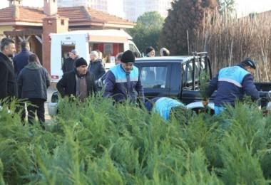 Nilüfer Belediyesi'nden Vatandaşlara Ücretsiz Fidan