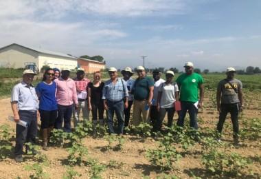 TİKA'dan Mozambik'e Pamukçuluk Alanında Eğitim Desteği