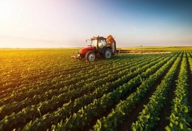 Hollanda kadar tarım alanı yok oldu
