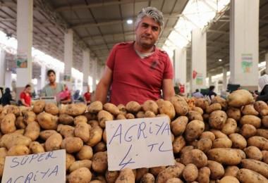 Türkiye Neden Suriye'den Patates Alıyor? Patatesle İlgili Bilmeniz Gerekenler