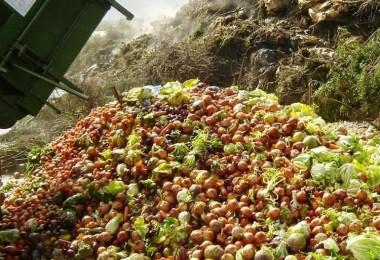 1.2 trilyon $'lık gıda çöpe gidiyor