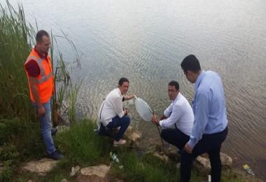Sakarya'da Balıklandırma Projesi Devam Ediyor
