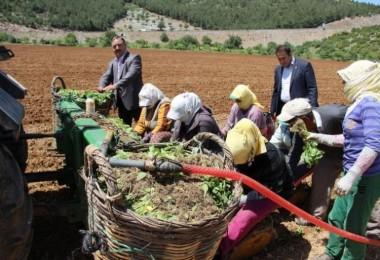 Çiftçilerimize Zirai Alet Hibe Desteği Şart
