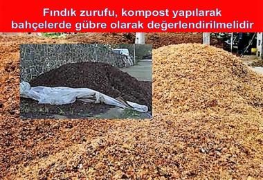 Fındık zurufu, kompost yapılarak bahçelerde gübre olarak değerlendirilmeli