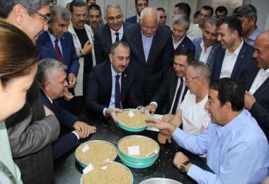 Günün İlk Buğday Satışı Bakan Gül'den