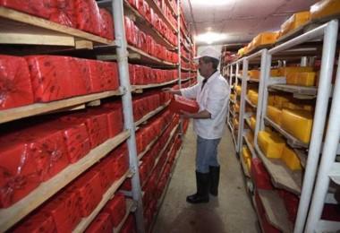 Küresel Gıda Fiyatları Temmuz'da Geriledi