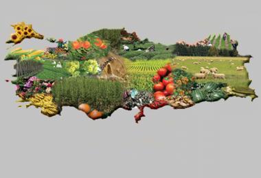 Tarımda Milli Birlik Projesi İle İlgili TÜRKTOB Görüşü