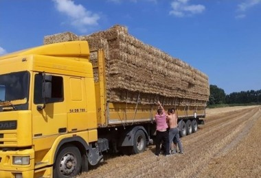 Saman Fiyatlarının Yükselmesi Hayvancıları Tedirgin Etti