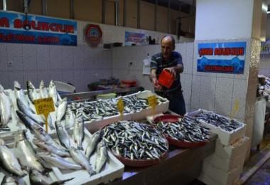 Yıllar Sonra İlk Kez Erken Çıkan Yerli Hamsi Balıkçıları Endişelendirdi