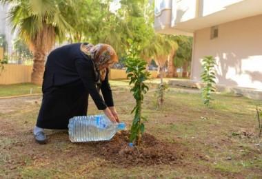Kızı İçin Her Yıl Fidan Diken Anneye Büyükşehir'den Destek