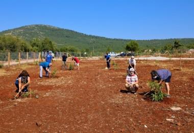 Büyükşehir'den yaşlılar ve engelliler için hobi bahçesi