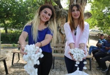 Mardin Büyükşehirden 2 bin 317 Aileye Tarım ve Hayvancılık Desteği