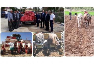 Sertifikalı Organik Tohum Türkiye' de İlk Defa Konya'da Üretilecek