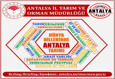 Antalya Tarımı Çalışmalarını 4 Dilde Yayınlandı