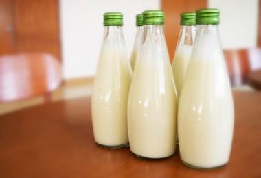 TİGEM 78 Bin Ton İnek Sütü Satacak