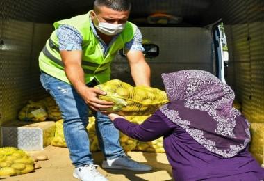 İzmir Büyükşehir, Üreticilerden 100 Ton Patates Aldı