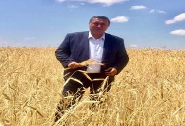 Bir Ton Buğdayla 2002 yılında 33 gr Altın Alan Çiftçi  2020 Yılında 4 Gram Alabiliyor
